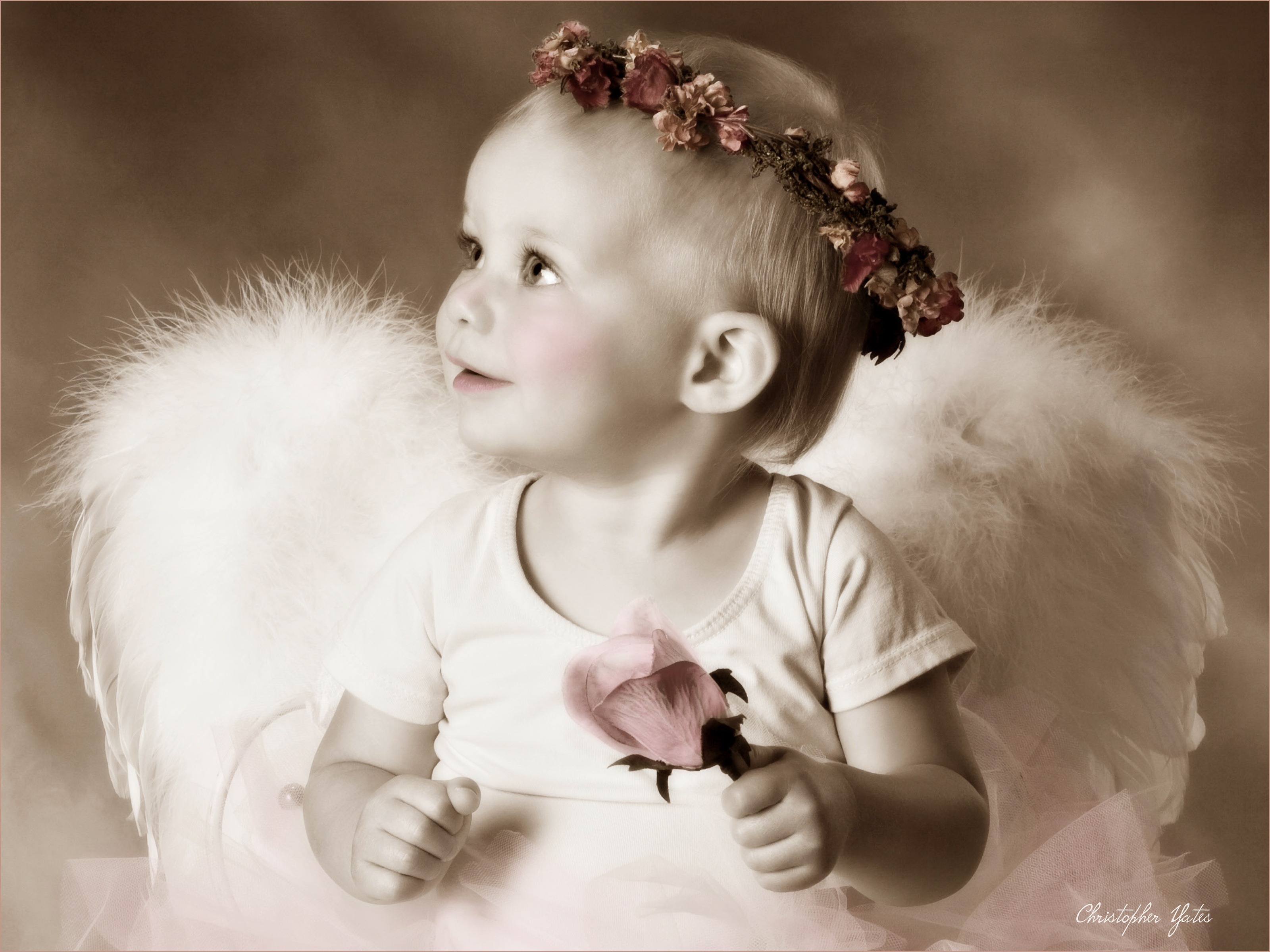 Little Angel Portrait, Winter Park, FL