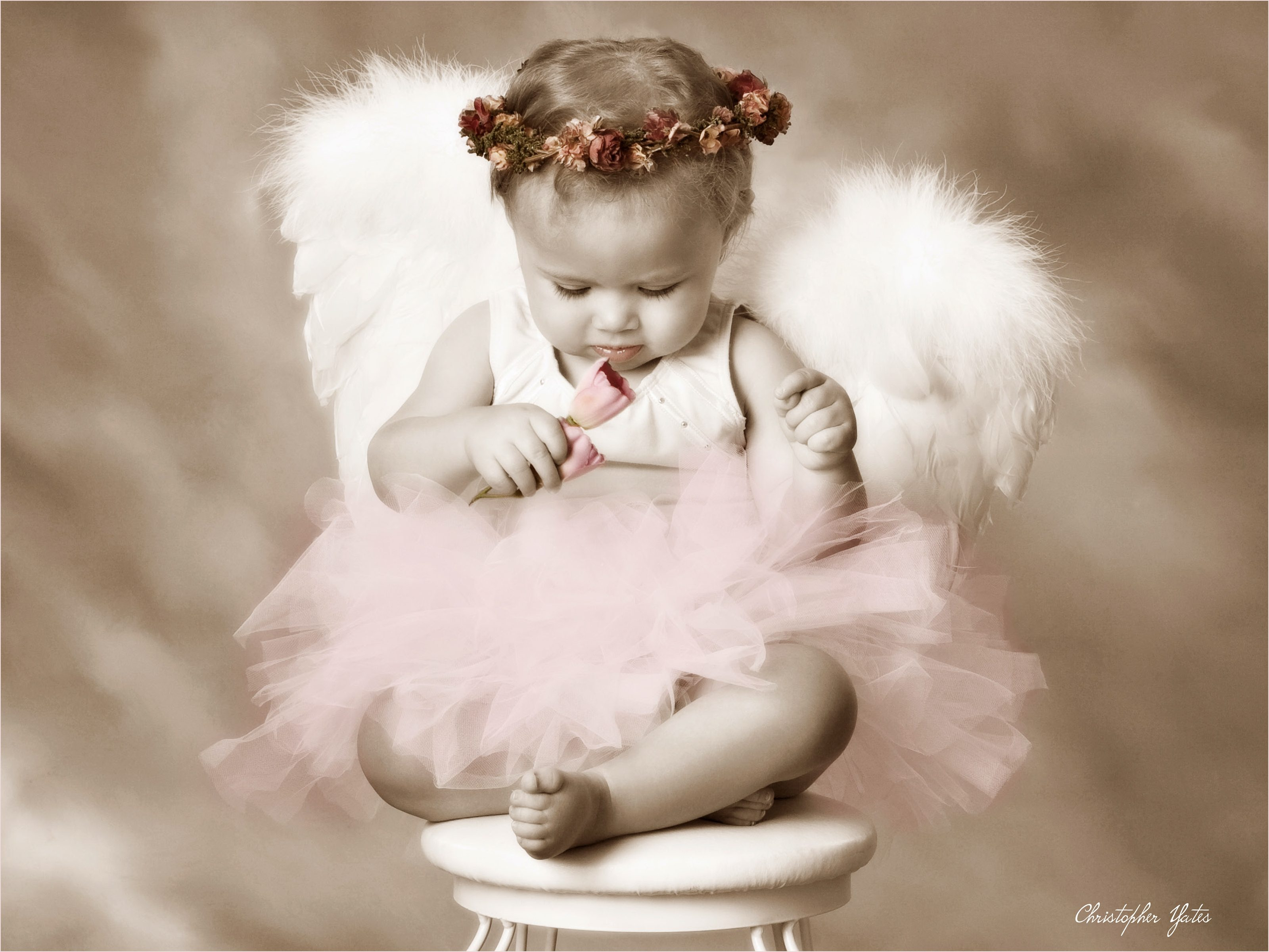 precious Little Angel Portrait